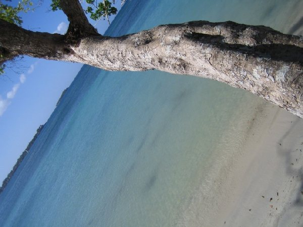 Riu Negril - Jamaika