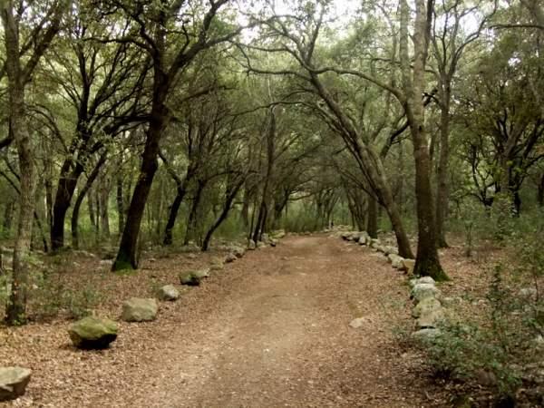 Ausflug zur Finca Gabelli petit bei Campanet, Mallorca