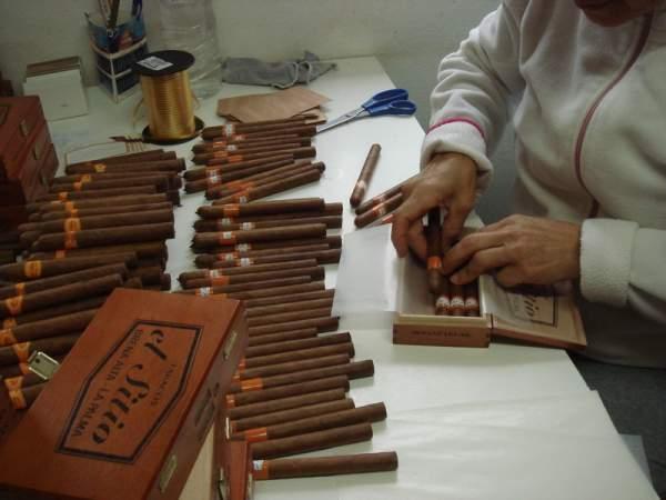 Führung durch die Tabakmanufakturen auf La Palma