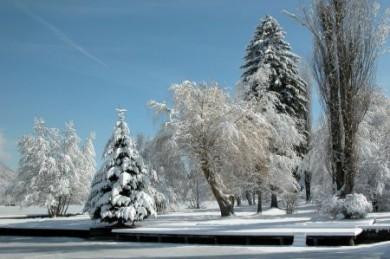 Winter - Schneelandschaft