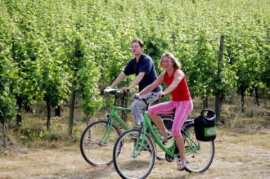 Bei den Radreisen von Velociped stehen bequeme Tourenräder zur Verfügung.