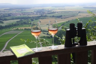 Vom Aussichtsturm auf dem Zabelstein aus schweift der Blick weit über die Weinlagen im Schweinfurter Land.