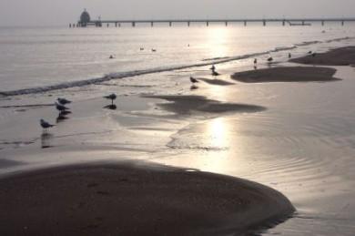 Dem Meer ganz nah: Impressionen vom Strand des Ostseebads Zinnowitz.