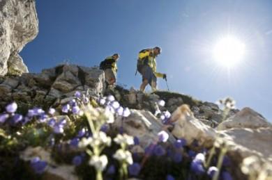 Die Ferienregion Rosengarten-Latemar ist ein Eldorado für Aktive in Wanderschuhen, auf dem Mountainbike oder hoch zu Ross.
