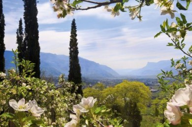 In Südtirol hält der Frühling schon Einzug, wenn auf der Alpennordseite noch Winter herrscht.